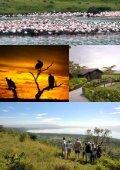 Hent brochure for Safari i Kenya - Jysk Rejsebureau - Page 7