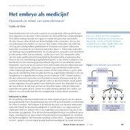 Het embryo als medicijn? - Nederlandse Transplantatie Stichting