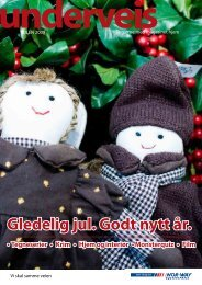 Gledelig jul. Godt nytt år. - Norsk Reiseinformasjon AS