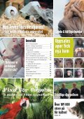 nr 1 2008.indd - Djurskyddet Sverige - Page 3