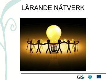 Lärande nätverk def.pdf - GRo