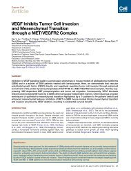 VEGF Inhibits Tumor Cell Invasion and Mesenchymal Transition ...