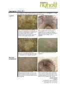 Vedr.: Græspleje – besøgsrapport marts 2011 - Aarhus Aadal Golf ... - Page 4