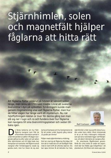 Flyttfåglar - Ålands Lyceum
