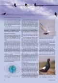 Flyttfåglar - Ålands Lyceum - Page 3