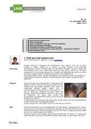FlexNyt udgave nr. 23 2011 - LRØ