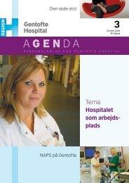 Hospitalet som arbejds- plads 3 - Gentofte Hospital