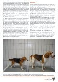 Janssen drugtesten - Anti Dierproeven Coalitie - Page 3