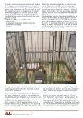 Janssen drugtesten - Anti Dierproeven Coalitie - Page 4