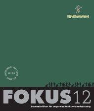 Ungdomsstyrelsen, utredning, Fokus 12
