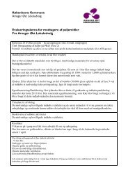 105_Evaluering_Ibrugtagning-af-hal-PB43 - Amager Øst Lokaludvalg