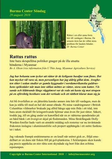 Svensk PDF (233 KB) - Burma.nu