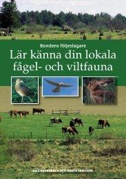 Lär känna din lokala fågel- och viltfauna (777 kb, pdf) - HS Konsult ...