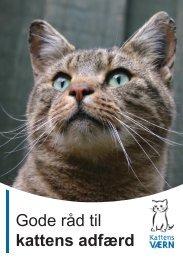 Gode råd til kattens adfærd - Kattens Værn