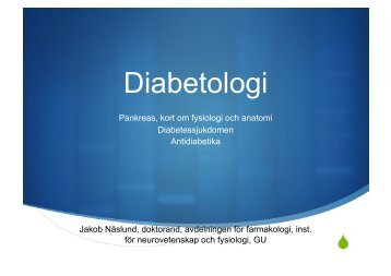 "Diabetologi - presentation (pdf - ""full-fil"", 2 Mb)"