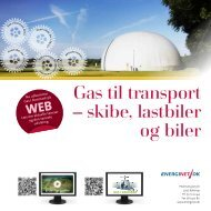 Gas til transport – skibe, lastbiler og biler - Energinet.dk