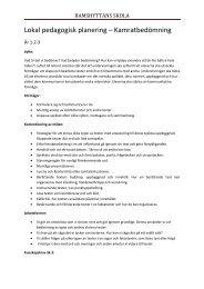 Lokal pedagogisk planering Kamratbedömning