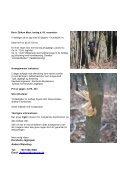 09 November - Gädebehn - Korsholm Jagtrejser - Page 3