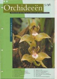 1996 - 5 - Orchideeën Vereniging Vlaanderen