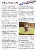 Kindskallet 2012 - Kind Brukshundklubb - Page 6