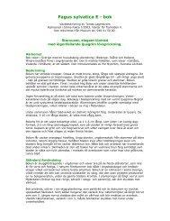Utförlig växtbeskrivning - E-planta