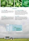Vitalis netherlandsPDF - Enza Zaden - Page 5