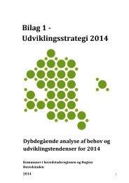 Bilag 1 - Udviklingsstrategi 2014 - Københavns Kommune