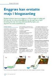 Enggræs kan erstatte majs i biogasanlæg - Biopress