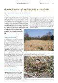 De waarde van monotone droge heide voor reptielen (maart 2012) - Page 2