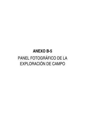 anexo b-5