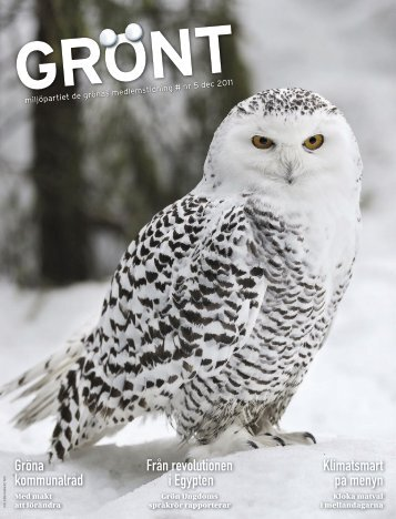 gront - Ola Lindberg