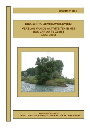 Jaarverslag Ringwerk Oeverzwaluwen Zemst 2006