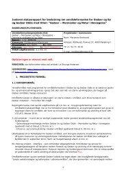 Gedser Områdefornyelse - Afrapportering - midtvejs - justeret
