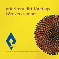ruter.se - presentation