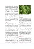 Zomer 2010 nr 1 - Nederlandse Varenvereniging - Page 7