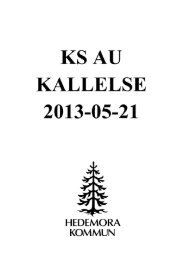 KSAU 2013-05-21 - Hedemora Kommun