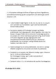 1. hf-projekt – Praksis og teori Nyborg Gymnasium