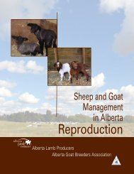 Reproduction - Alberta Lamb Producers