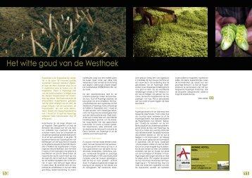 Het witte goud van de Westhoek - ImmoResidentieel