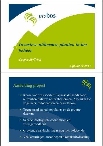 Invasieve uitheemse planten in het beheer
