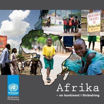 Läs hela rapporten här (PDF-dokument, 2,9 MB) - Svenska FN ...