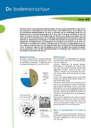 A3. De bodemstructuur - Prosensols