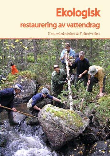 Ekologisk restaurering av vattendrag - Havs