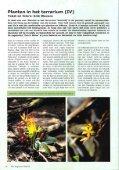 Planten in het terrarium (IV) - Tuinbedrijf Erik Wevers - Page 2