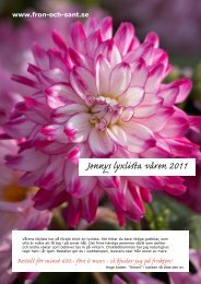 Jennys lyxlista våren 2011 Beställ för minst 600:- före 6 mars - så ...