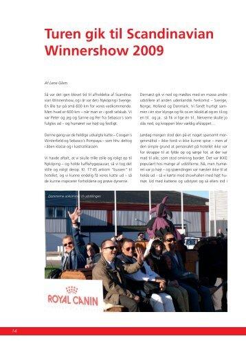 Scandinavian Winner Show 2009 - Felis Danica