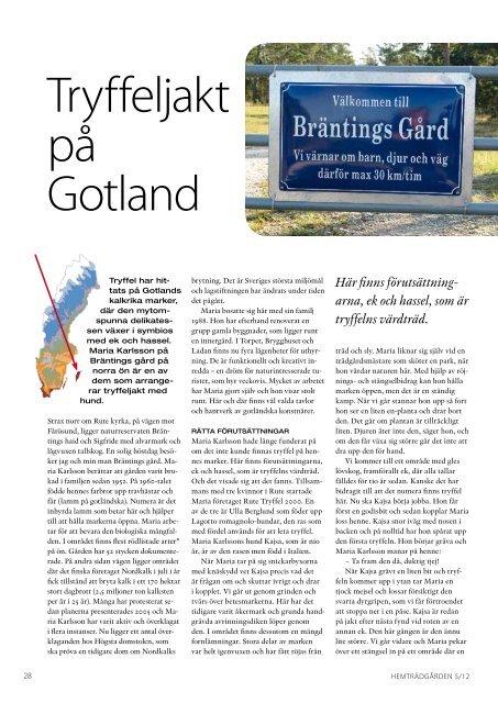 Tryffeljakt på Gotland - bräntings gård