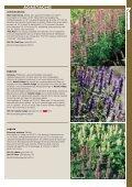 Katalog 2013-2014 - Weibulls Horto - Page 7