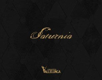 Vallelunga Ceramica Saturnia, 2010