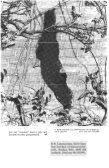 Steenmarters Opmars eikelmuis en vos Grijze zeehond terug ... - Page 6